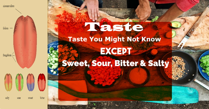 Taste You Might Not Know Except Sweet, Sour, Bitter & Salty